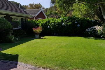 Garden Cleanups & Upgrades